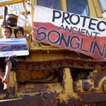 The bulldozer sent out to clear Country is currently halted by people protecting Country for future generations