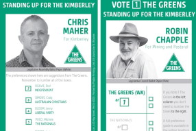 greens voting card